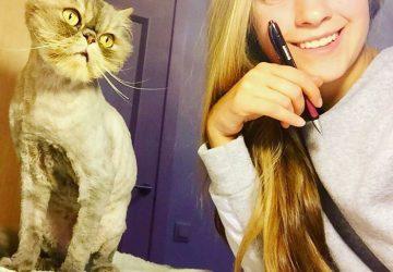 8c0aa75b39da Μια φοιτήτρια από τη Λετονία έσωσε σε δυο χρόνια 250 αδέσποτες γάτες ...