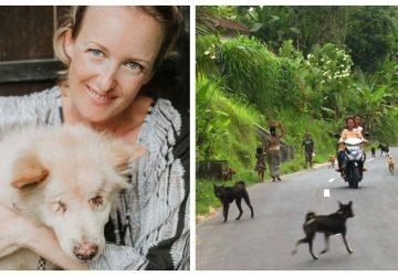 25d571a53cec Αυστραλέζα μετακόμισε στο Μπαλί για να βοηθήσει τα αδέσποτα που ζουν σε  άθλιες συνθήκες